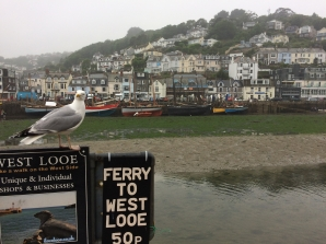 Looe dries twice a day