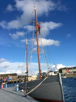 Paul up the mast. Photo by Celia