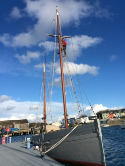 Paul up the mast. Photo by Celia